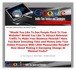 Google Traffic Tips, Tactics And Strategies